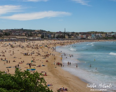 BondiBeach (6 of 56)