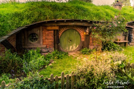 Hobbiton (16 of 77)